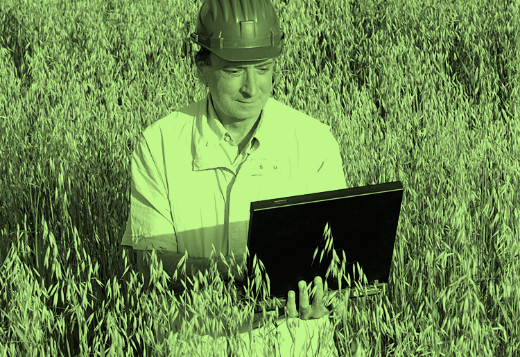 Moody greeb environmental site assessment block man looking at reports on computer in hard hat employee